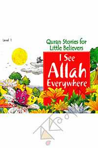 I See Allah Everywhere (Paperback)